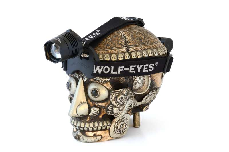 Wolf Eyes Dingo LED Headlamp hunting